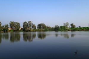 Bulbule_Lake_Surkhet_(बुलबुले_ताल_सुर्खेत).jpeg
